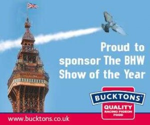 Bucktons Logo Blackpool Show of the Year.