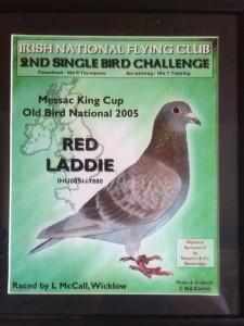 redladdie