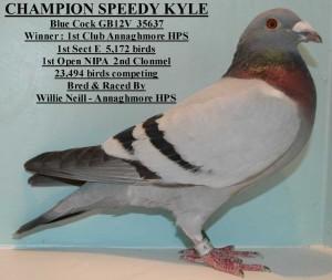 Champion Speedy Kyle